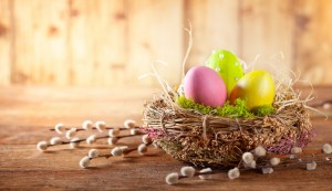 Easter composition with colorful Easter eggs in nest and branche